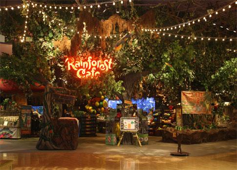 Address Of Rainforest Cafe Downtown Disney