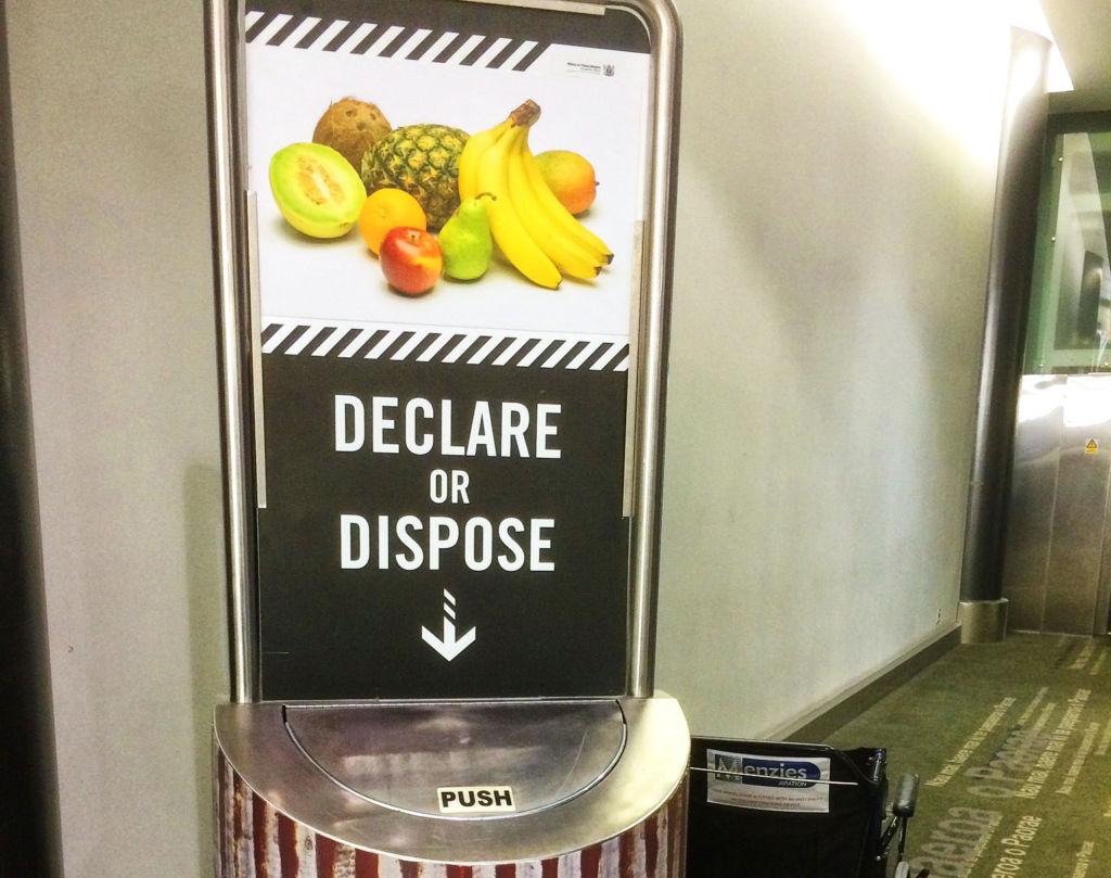 DECLARE OR DISPOSE